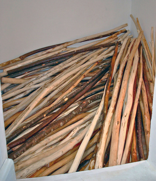 161 Walking Sticks
